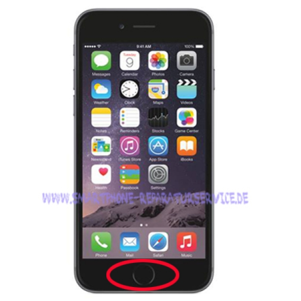 Iphone 6 Homebutton Reparatur
